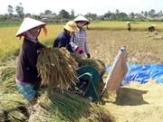 越南人类发展指数居世界第113位