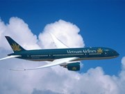 春节期间越航将增加国内航班