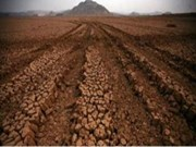 农业要主动应对气候变化