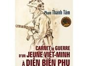 法国出版在越盟角度下的奠边府书籍