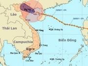 5号台风袭击越南多个省份