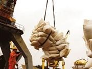 越南将进一步进军半熟米出口市场