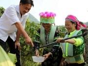 亚洲开发银行向越南扶贫项目提供2480万美元