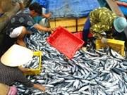 越南着重水产资源保护工作