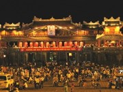 2012年越南国家旅游年网站正式开通