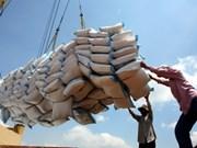 今年越南签署大米出口合同已达320万吨