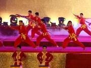 第四届越南传统武术国际节在平定省隆重开幕