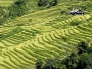 2012年穆庚寨梯田风景名胜区文化周将于九月中旬举行