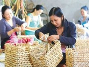 日本和亚洲开发银行协助越南发展微观金融