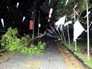 8号台风造成越南损失巨大北部和中部10死7伤