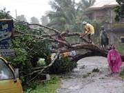 """强台风""""宝霞""""袭击菲律宾造成严重损失"""