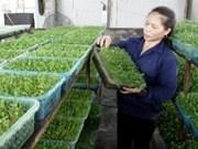 越南与德国促进生物技术应用合作