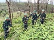 越南积极响应4·4世界防止炸弹地雷日