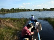 越南注重保护与发展同塔梅湿地