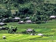 越南山罗省昂寨生态旅游区的魅力