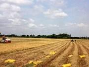 越南获得FAO的消除饥荒奖状
