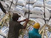 2013年前5个月柬埔寨大米出口量大幅增加
