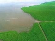 越南重视克服与减轻金瓯半岛地面沉降现象