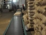 今年上半年越南大米出口量为300多万吨
