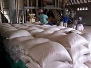 今年上半年柬埔寨出口大米同比增长125%