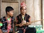越南赫耶族传统乐器传承人