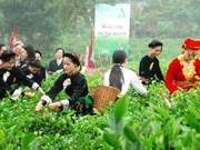 第二届太原国际茶叶节将于今年11月初举行