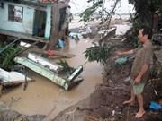 越南与法国分享对应对气候变化成功经验