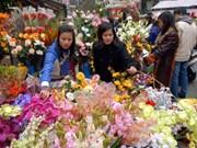 河内市的春节花市