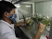 越南着重发展高科技领域