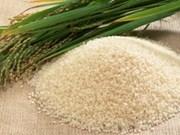 世行呼吁菲律宾取消大米进口配额