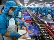 九龙江三角洲力争查鱼出口额达17.5亿美元