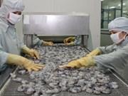 越南九龙江三角洲力争实现虾类出口额达25.5亿美元