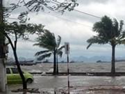 九龙江三角洲出资3.9亿美元适应气候变化