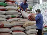 越南芹苴市大米出口量保持增长势头