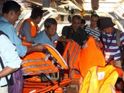 国际舆论高度评价越南努力搜救马航失踪客机