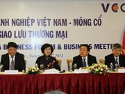 蒙古总统:蒙古愿与越南加强各个领域合作