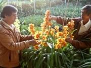 武文宁副总理主持召开新农村建设落实3年总结会议