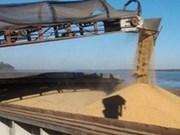 越南成为阿根廷黄豆皮进口最多国家