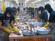 越南九龙江三角洲地区吸引日本投资商的眼球