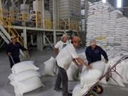 越南中标向菲律宾出口80万吨大米