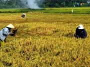 首次越南—苏丹混合委员会第一次会议在喀土穆召开