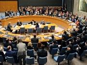 越南代表出席联合国安理会妇女、和平与安全辩论会