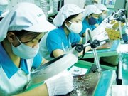 日本是越南最大投资国