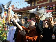 越南南部平阳省隆重庆祝联合国卫塞节