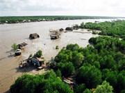越南: 维护金瓯角生态系统