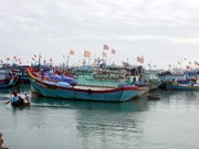 广义省李山岛渔民反对中国在越南海域的非法行为