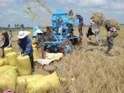 越南农业改革的动力
