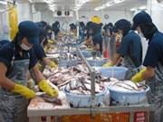 越南与巴西双边贸易总额逐年增加