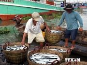 越南政府允许组织和个人开发利用特定海域海洋资源