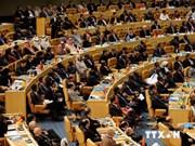 越南出席不结盟运动第17届部长级会议